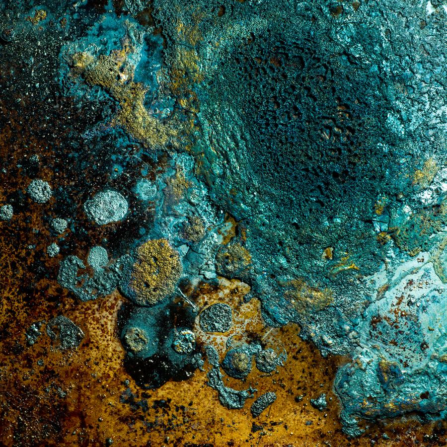 Charred Landscape #1 - Archival Pigment Print 42 inches x 42 inches