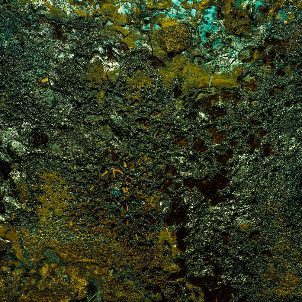 Charred Landscape #5 - Archival Pigment Print 42 inches x 42 inches