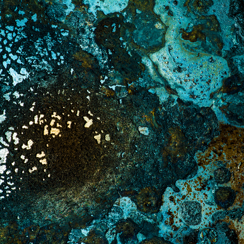 Charred Landscape #6 - Archival Pigment Print 42 inches x 42 inches