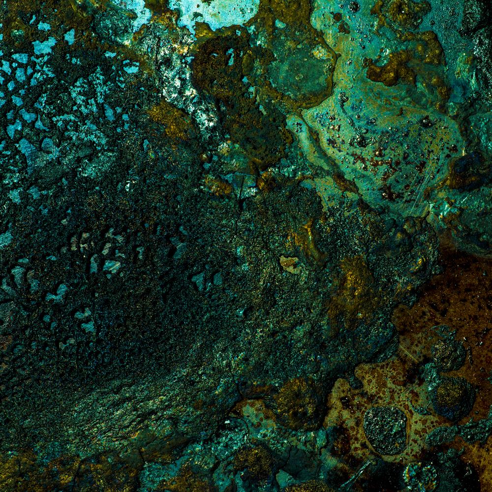 Charred Landscape #8 - Archival Pigment Print 42 inches x 42 inches